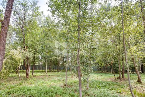 Поселок Малое Сареево, id sl08002, фото 2