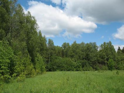 Участок Любушкин хутор, id ls1101308, фото 2