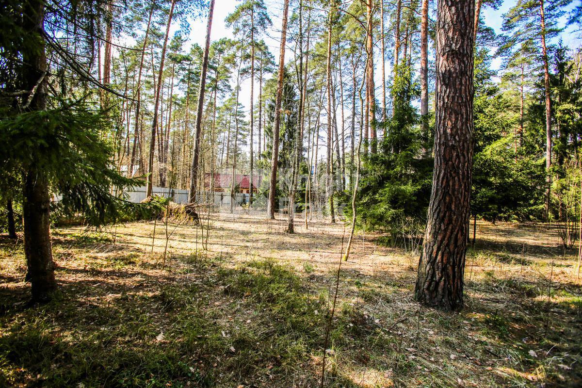 Дом Сосны-1, id hs1102705, фото 4