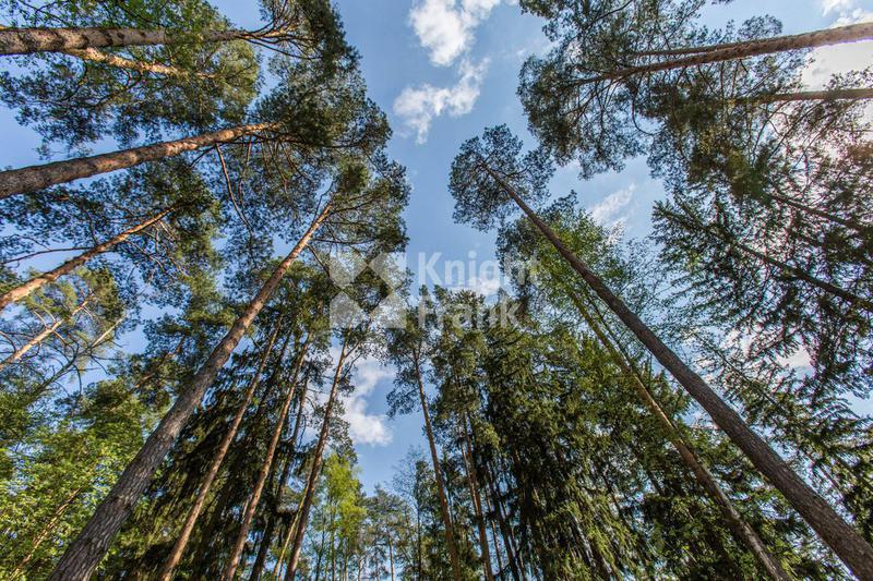 Участок Горки 10, id ls1104018, фото 1