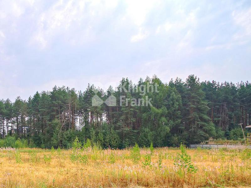 Участок Резиденции Бенилюкс, id ls1301821, фото 2