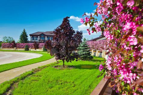 Дом Миллениум Парк, id hs13027026, фото 2