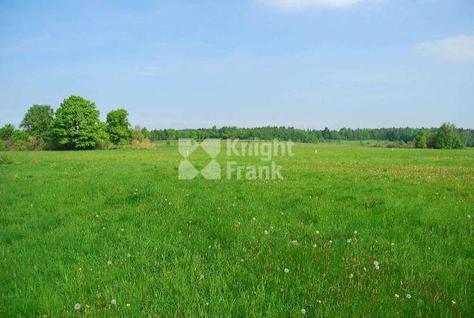Участок Ильинское поле, id ls1311617, фото 1