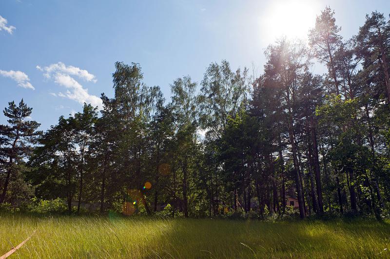 Поселок Княжий бор, id sl19006, фото 4