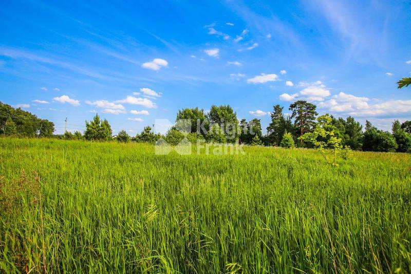 Участок Ренессанс парк, id ls9910008, фото 1