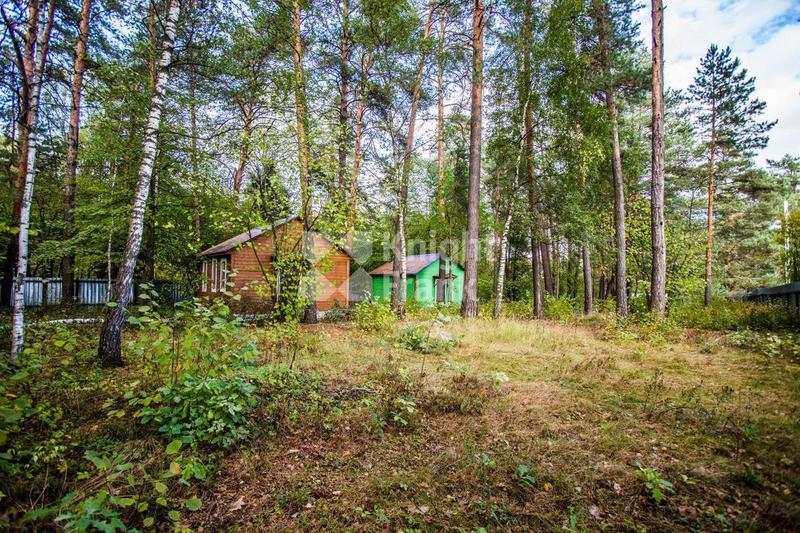 Участок Большое Сареево, id ls9910084, фото 1