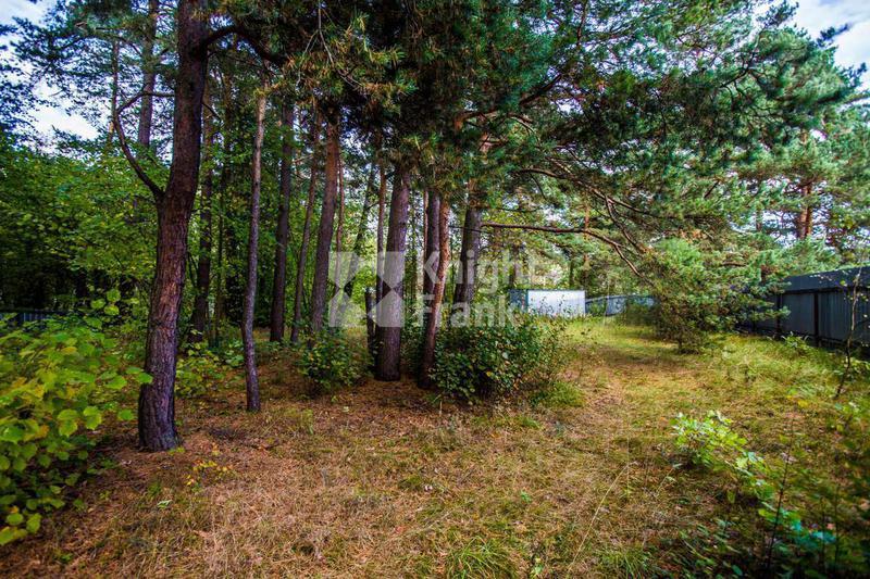 Участок Большое Сареево, id ls9910084, фото 2