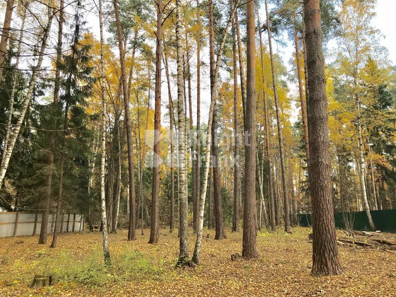 Участок Жуковка 2, id ls9910407, фото 1
