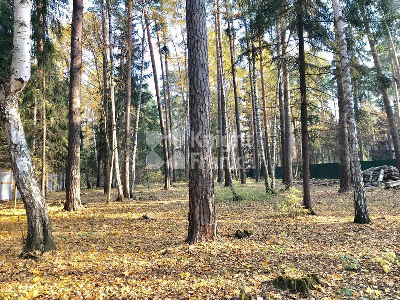 Участок Жуковка 2, id ls9910407, фото 2