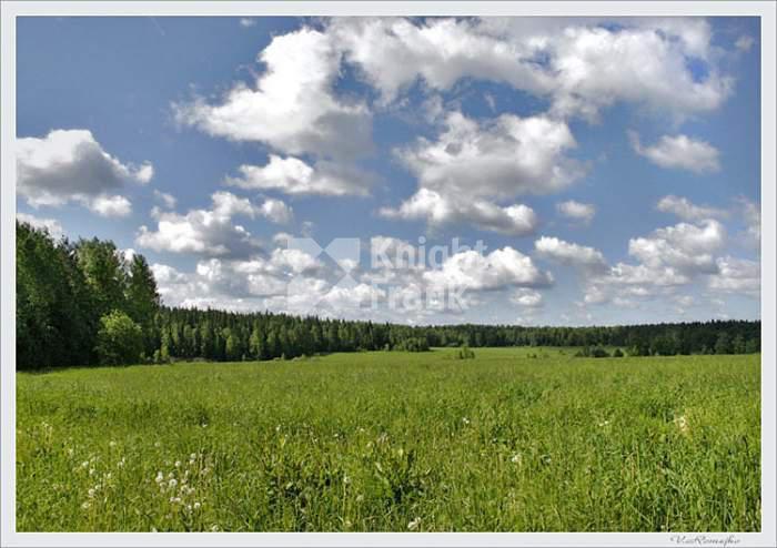 Участок Знаменские просторы, id ls9910642, фото 1