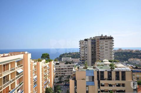 Пентхаус Пентхаус в Монако, id ir1537, фото 2