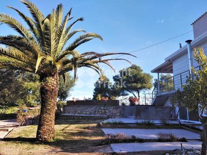 Вилла Вилла в Ситонии в Греции, id ir1708, фото 4