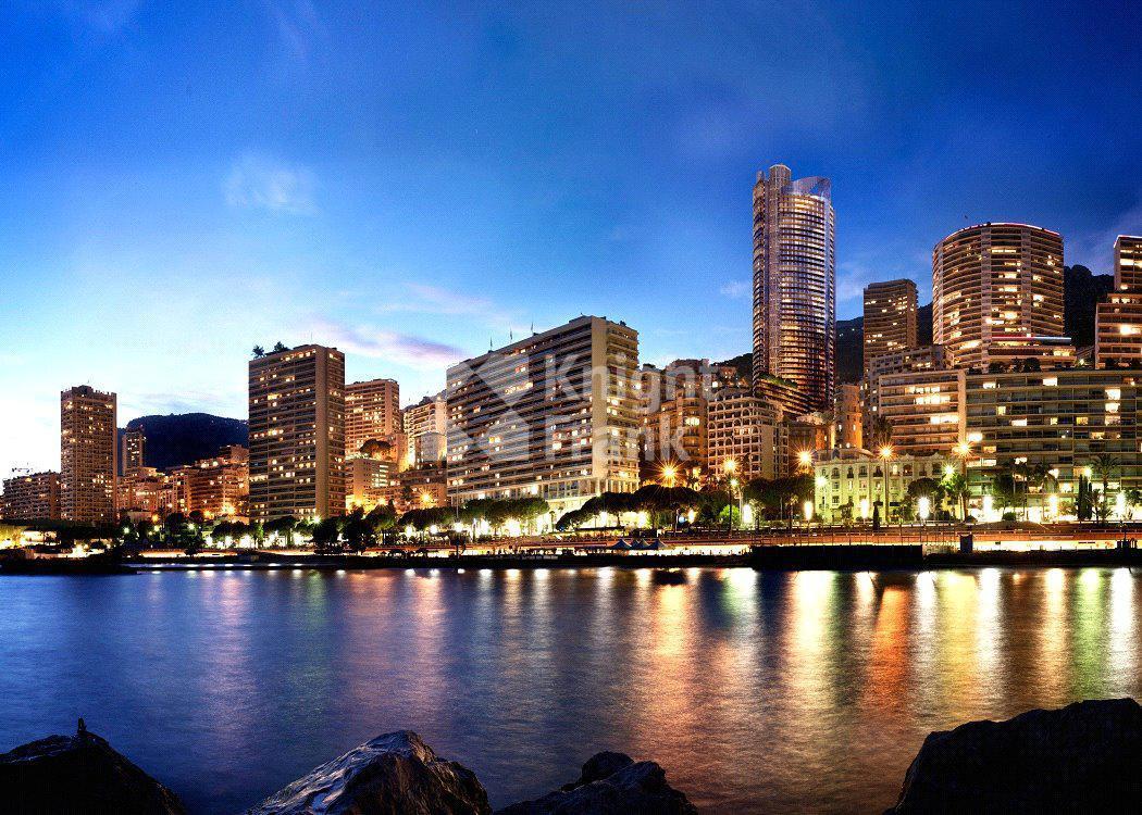 Апартаменты Апартаменты в эксклюзивной башне в Монако, id ir1783, фото 18