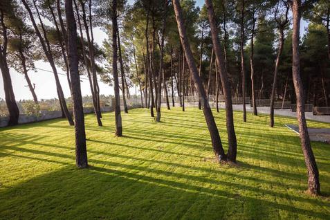 Вилла Современная вилла в сосновом лесу, id ir611, фото 4