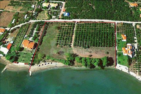 Участок Земельный участок в Эпидавре, id ir744, фото 3