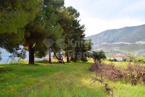 Участок Земельный участок в Эпидавре, id ir744, фото 2