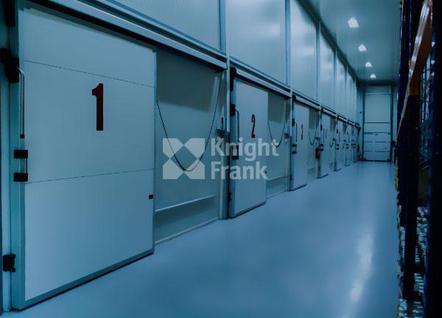Склад Холодильный склад в Томилино, id wl9111030, фото 1